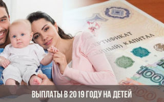 Сколько получает мать одиночка на ребенка в россии