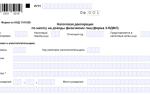 Бланк налоговой декларации 3-ндфл за 2019 год: как заполнить