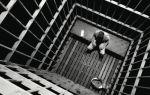 Ограничение свободы: понятие, основные виды