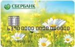 Социальная карта пенсионера маэстро от сбербанка