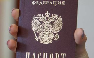 Замена паспорта через госуслуги: условия замены, стоимость и сроки