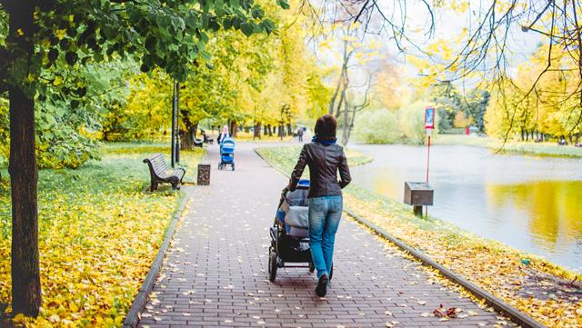 Какие ежемесячные выплаты полагаются семьям на детей