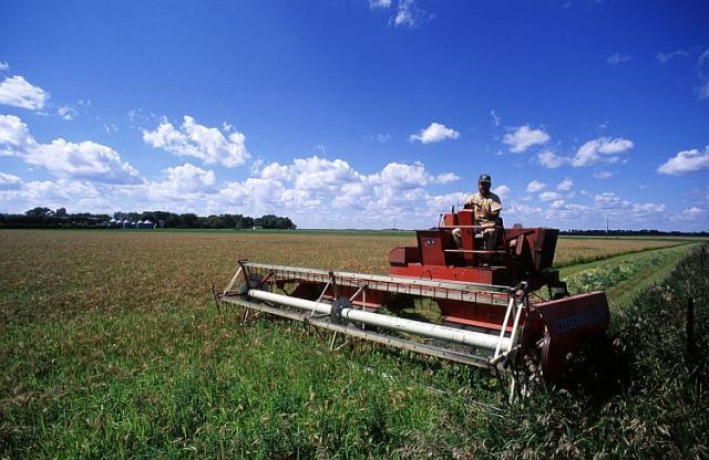 Безвозмездный кредит на развитие сельского хозяйства