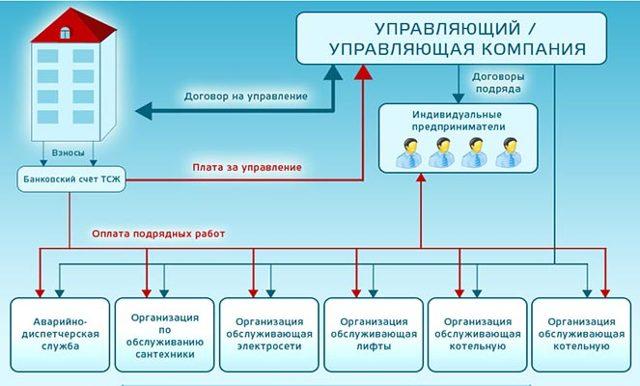 ТСЖ и УК: плюсы и минусы каждой формы, что выбрать