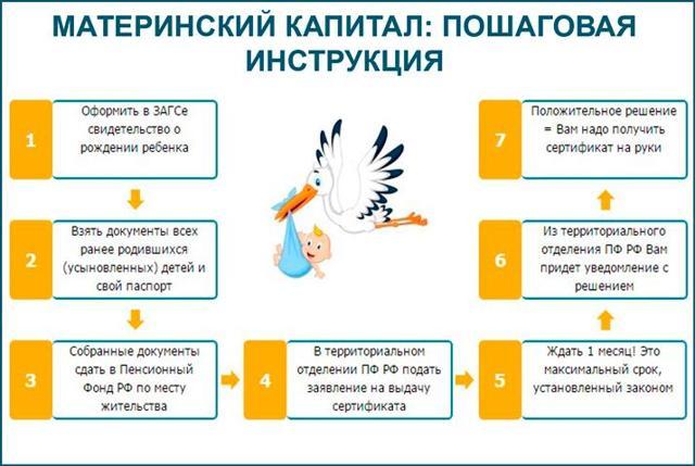 Материнский капитал до 3 лет - порядок использования