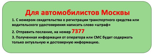 Горячая линия ГИБДД: номера телефонов для разных регионов России