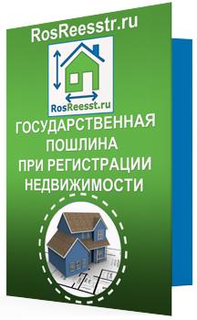 Реквизиты для оплаты госпошлины в Росреестр: основные положения и способы