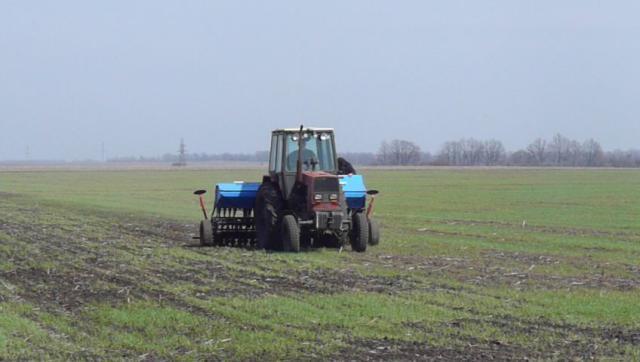 Субсидии для сельского хозяйства в 2019 году на развитие - как получить