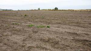 Какие документы необходимы для регистрации прав собственности на землю