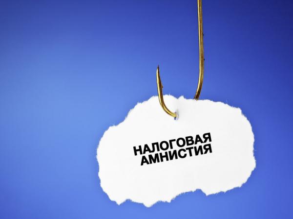 Налоговая амнистия 2019 для физических лиц и ИП: кому и как спишут долги по налогам и взносам